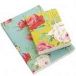 Christine-notebook-pair-e1427211340310-150x150